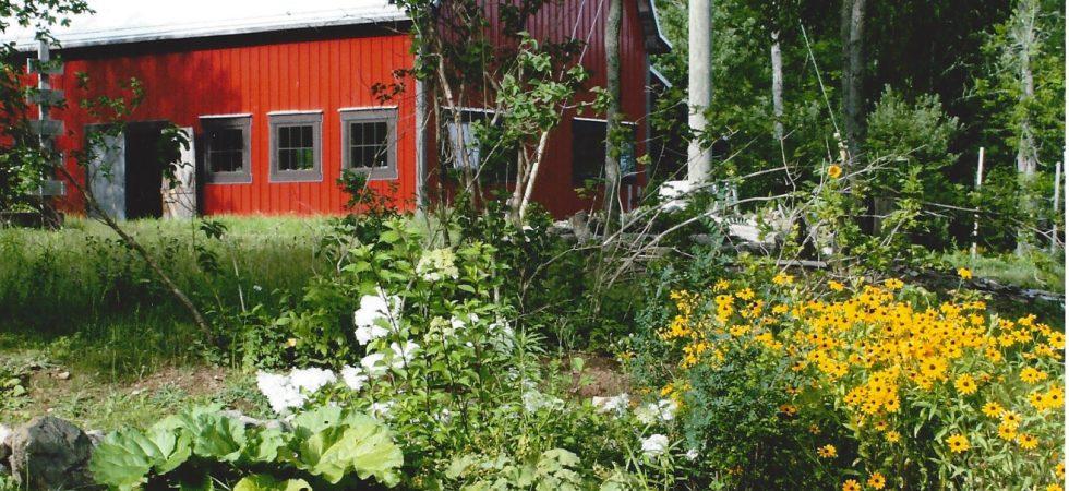 31 Stillwater barn
