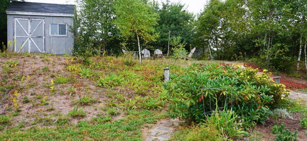 9 Oleander Court-00576