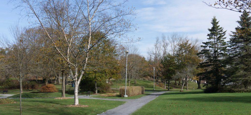Park-1-29