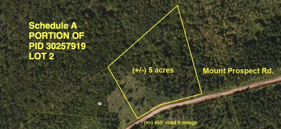 Schedule A LOT 2 Aerial Map - Mount Prospect Rd