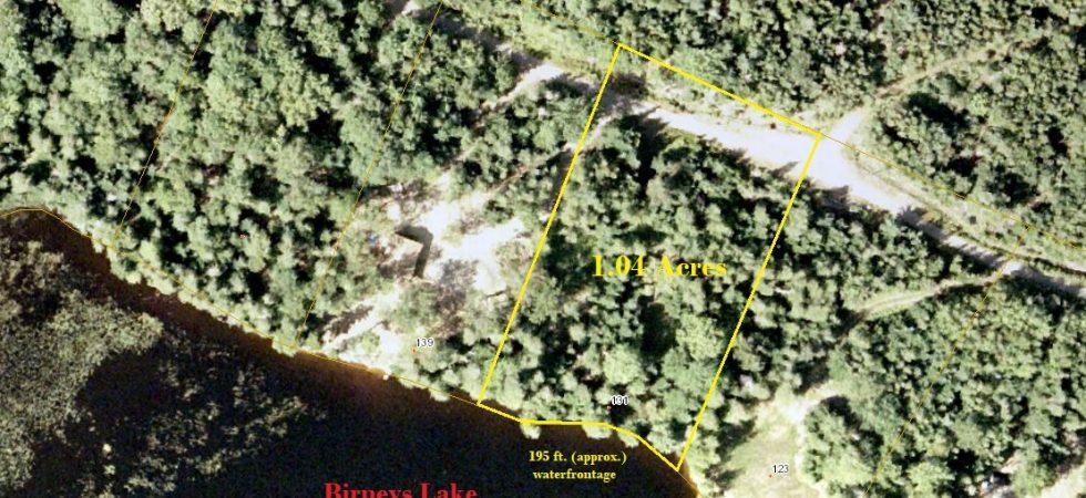 Aerial Map-Birneys Lake